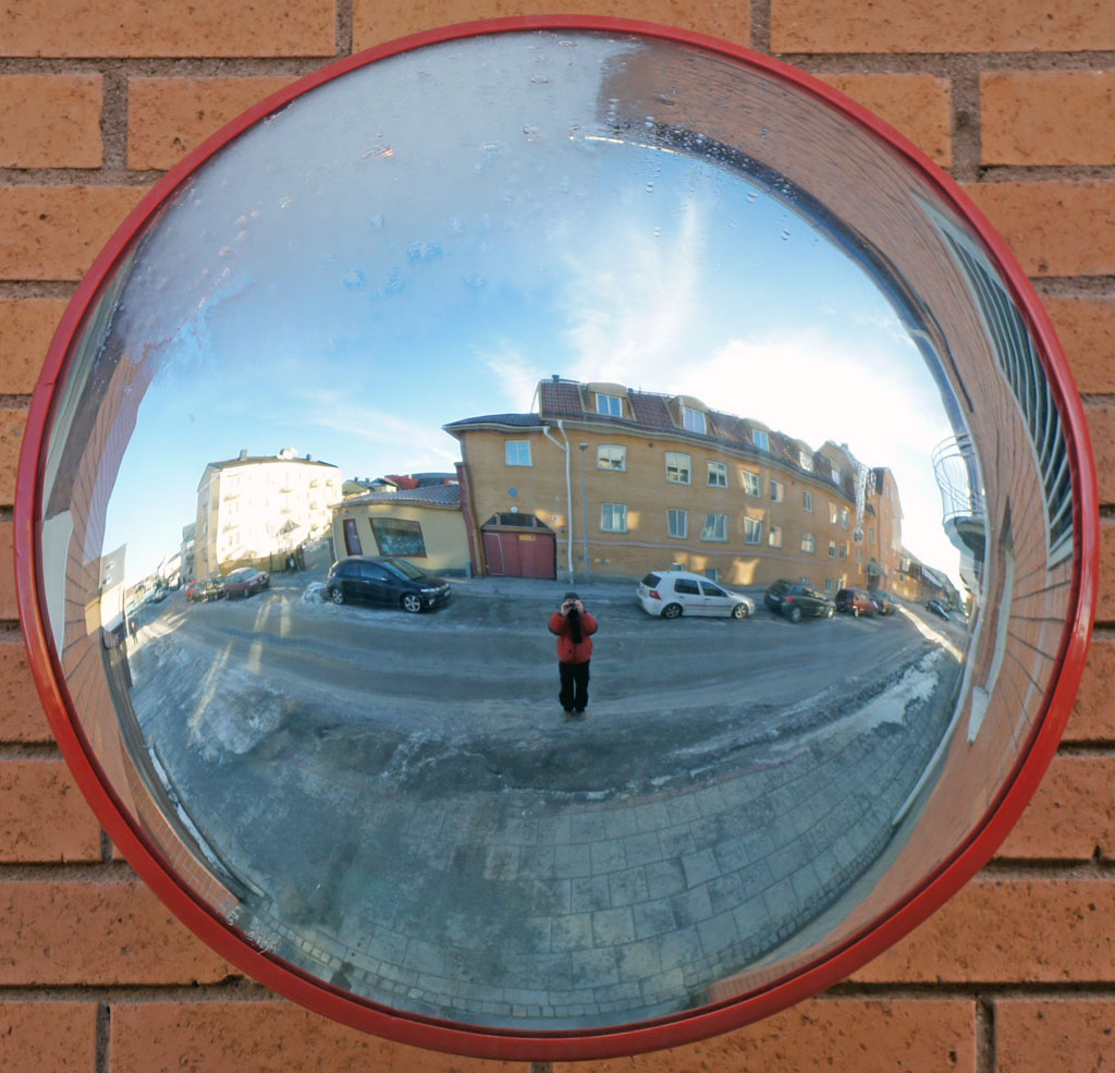 288. Spegelbild